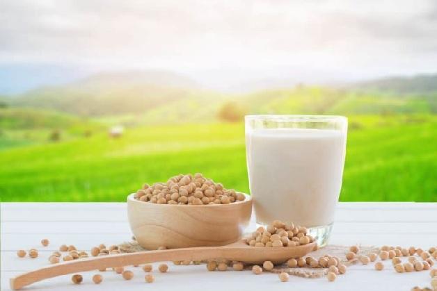 U xơ tử cung có nên uống sữa đậu nành hay không là thắc mắc chung của nhiều người