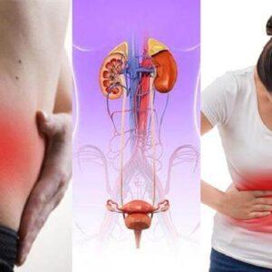 Viêm đường tiết niệu bệnh học: Cảnh giác biến chứng