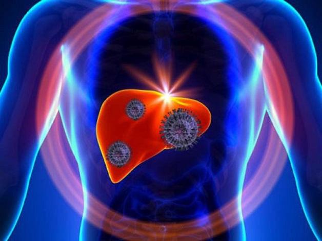 Viêm gan B và C mạn tính